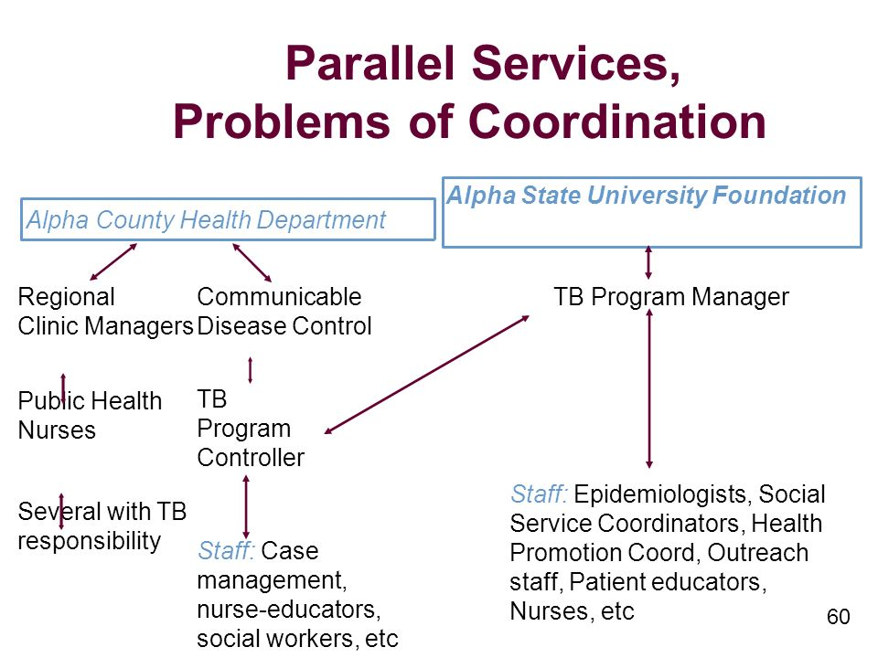 60 Parallel Services, Problems of Coordination Alpha State University Foundation Alpha County Health Department Regional Clinic Managers Public Health Nurses Several with TB responsibility Communicable Disease Control TB Program Controller Staff: Case management, nurse-educators, social workers, etc TB Program Manager Staff: Epidemiologists, Social Service Coordinators, Health Promotion Coord, Outreach staff, Patient educators, Nurses, etc