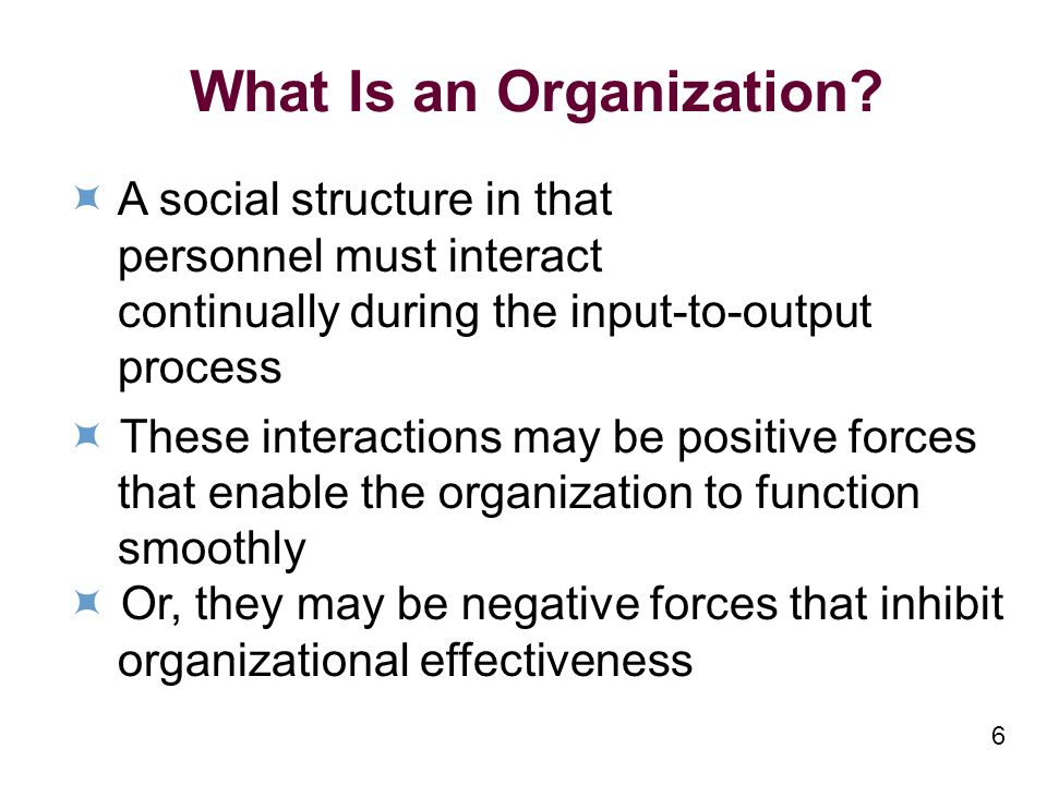 6 What Is an Organization.