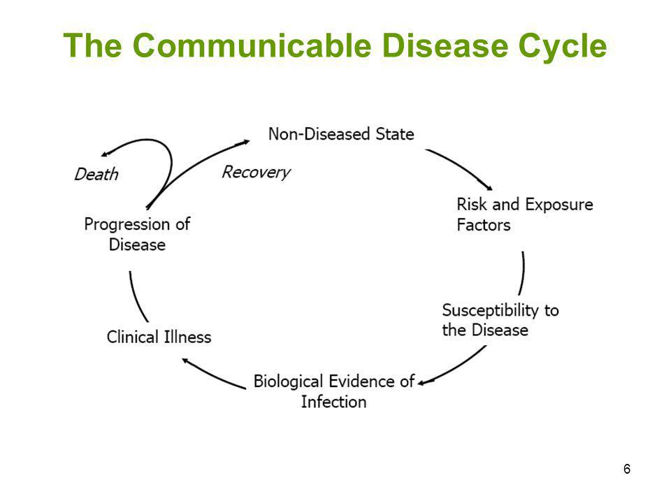 37 Natural Disease Cycle