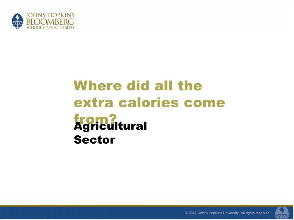 Where did all the extra calories come from Agricultural Sector