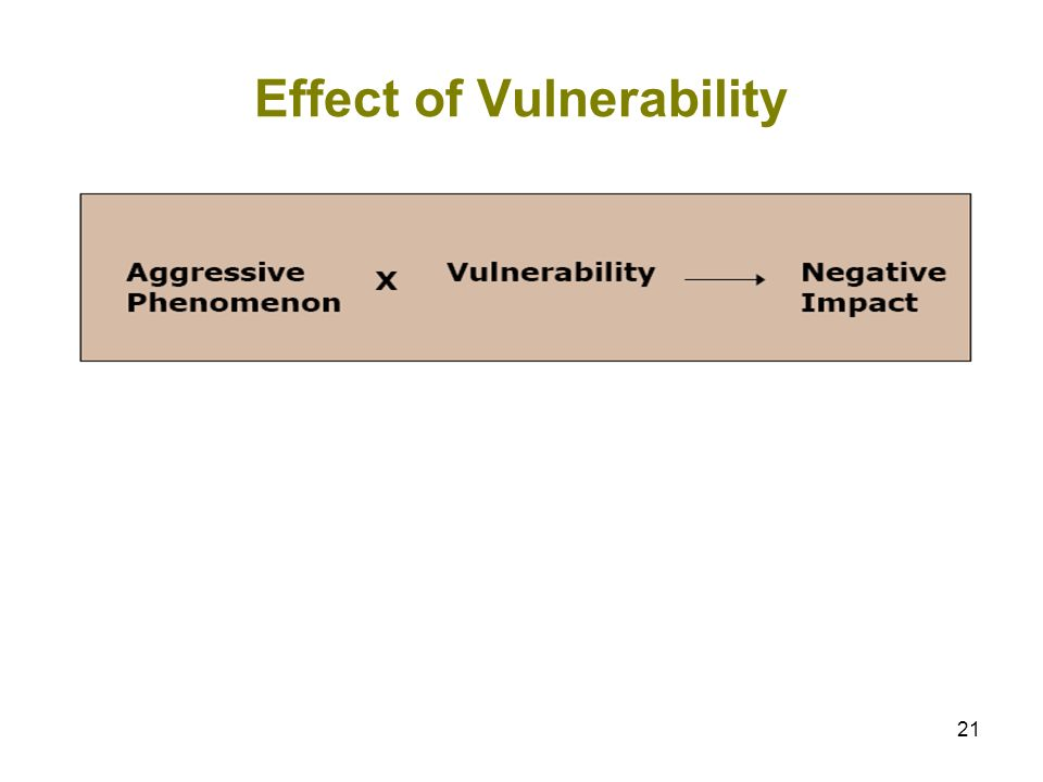 21 Effect of Vulnerability