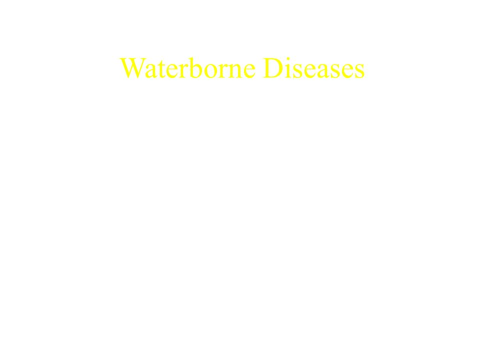 Waterborne Diseases From what sources do people get water? If water is polluted, with human or animal excrement……. Enteritides: Vibrio cholerae; Salmo