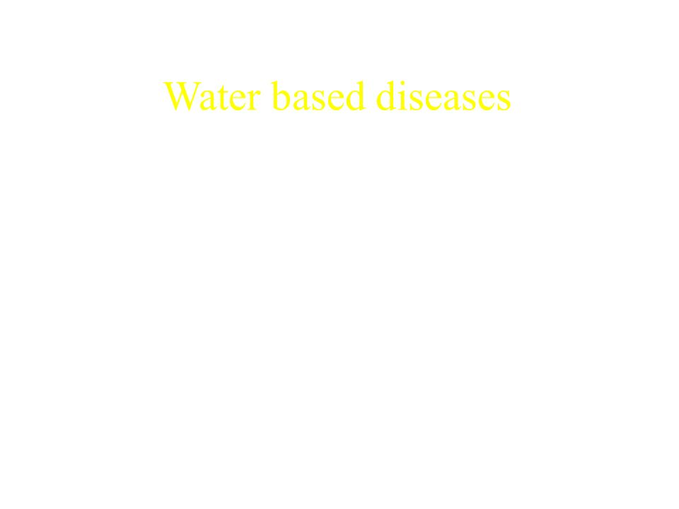 Water based diseases Diseases acquired when people are exposed to natural water. Schistosomiasis Guinea worm (Dracunculus medinensis Cholera and other