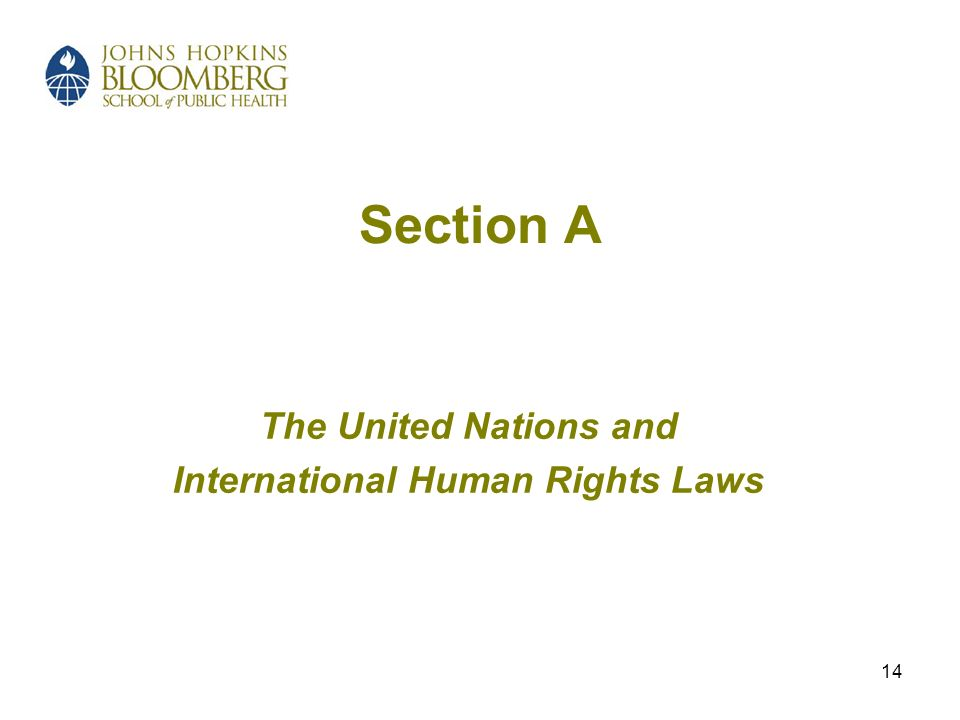 14 Section A The United Nations and International Human Rights Laws