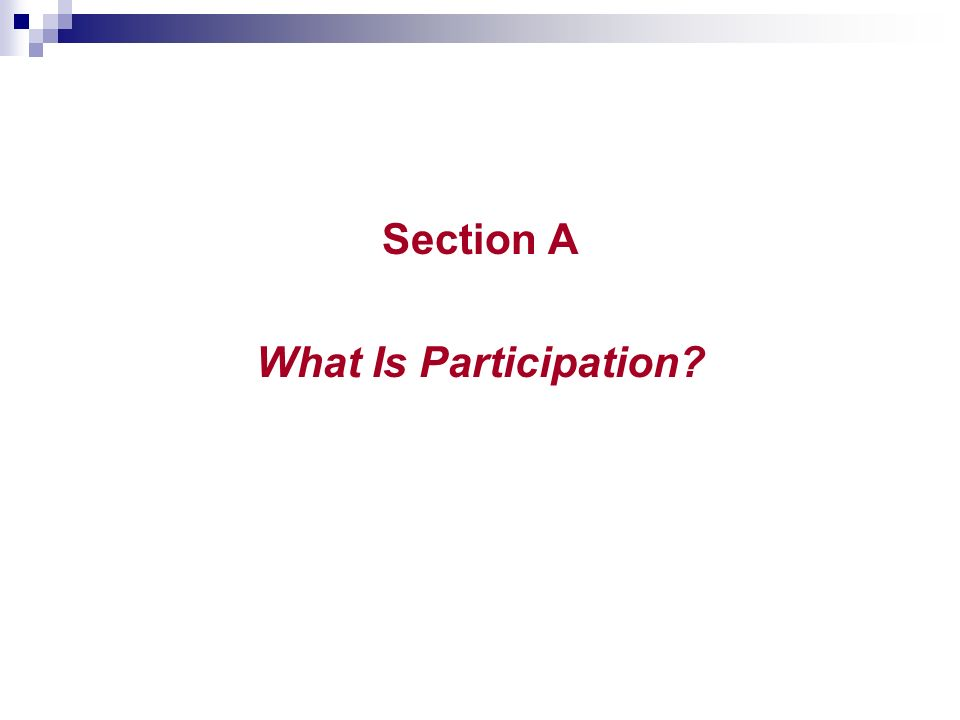 Section A What Is Participation