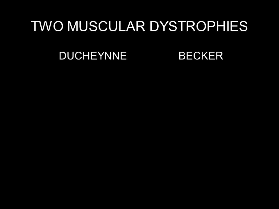 TWO MUSCULAR DYSTROPHIES DUCHEYNNE BECKER