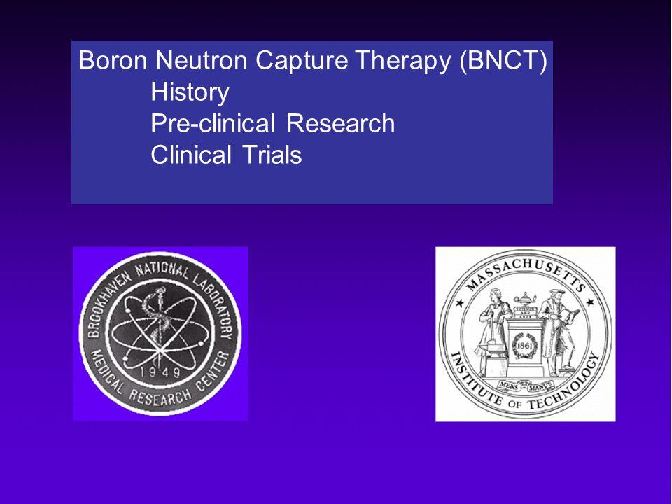 Patient survival data BNL BNCT Data - All Patients Probability of Survival Time post-diagnosis (months)