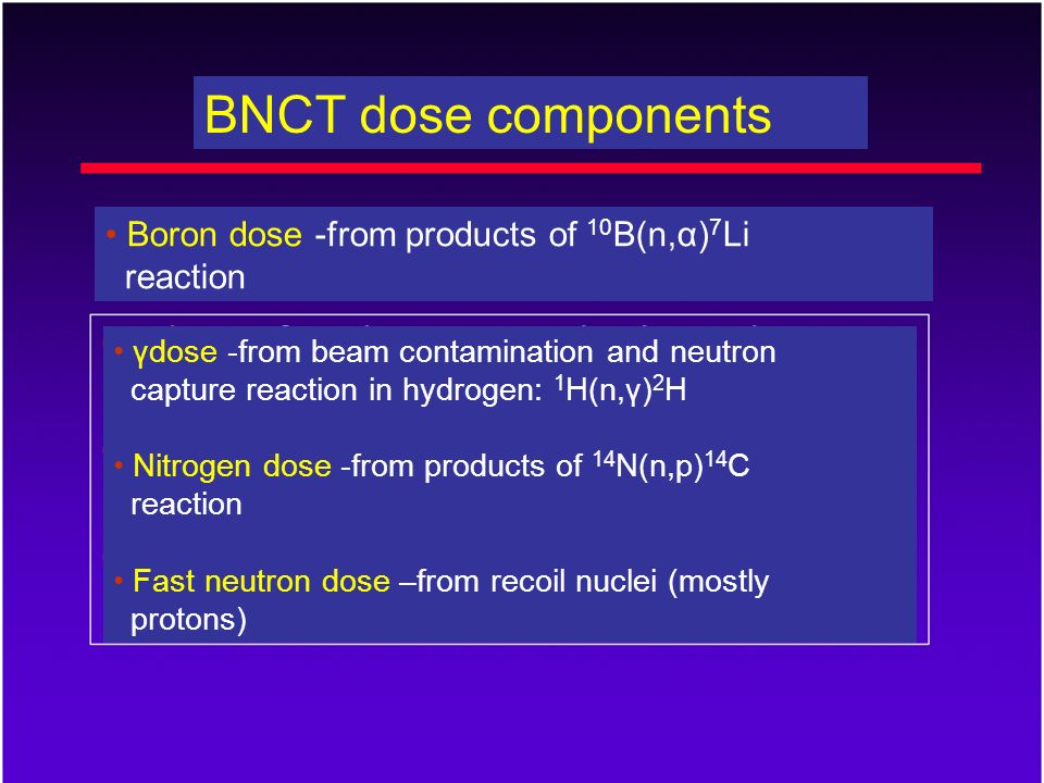 BNCT dose components γdose -from beam contamination and neutron capture reaction in hydrogen: 1 H(n,γ) 2 H Nitrogen dose -from products of 14 N(n,p) 1
