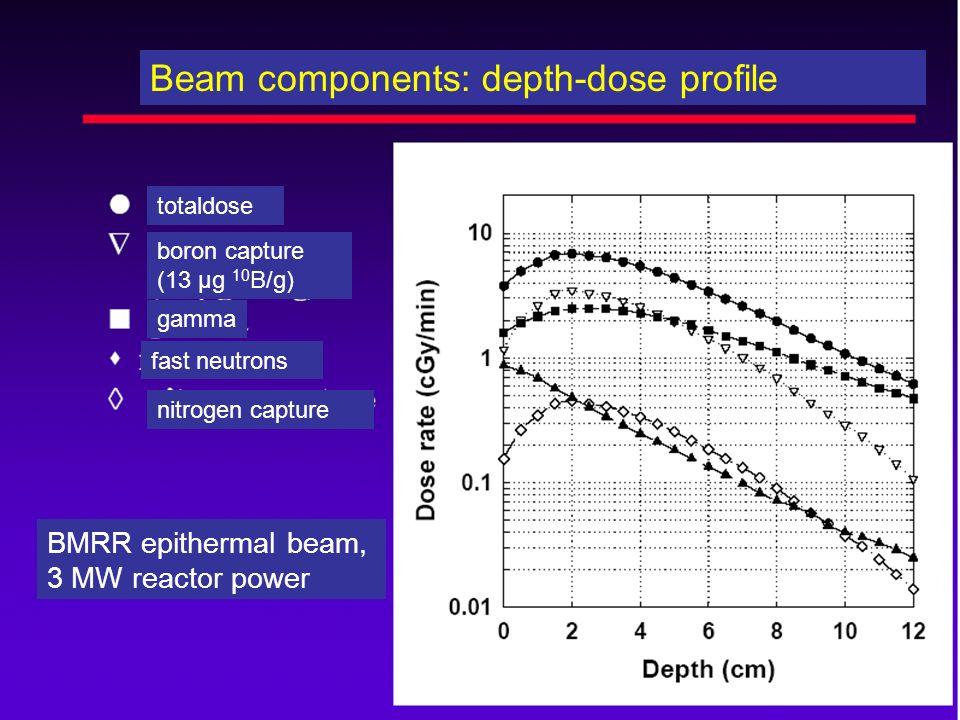 Beam components: depth-dose profile totaldose boron capture (13 µg 10 B/g) gamma fast neutrons nitrogen capture BMRR epithermal beam, 3 MW reactor pow