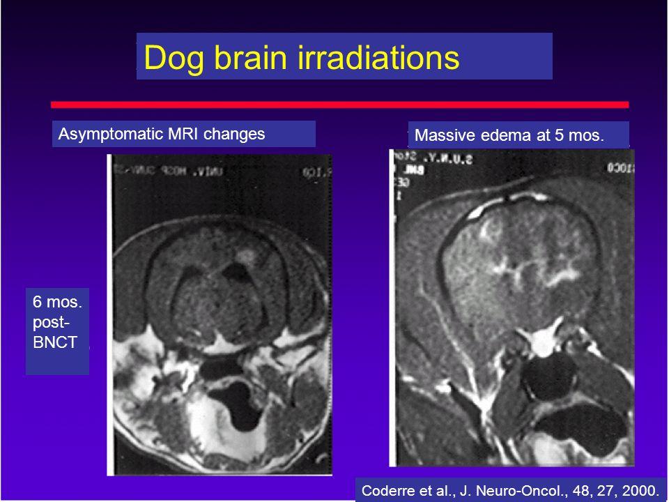 Asymptomatic MRI changes Massive edema at 5 mos. 6 mos. post- BNCT Dog brain irradiations Coderre et al., J. Neuro-Oncol., 48, 27, 2000.