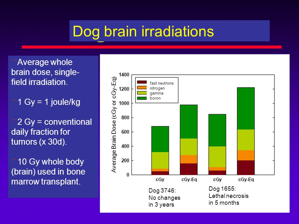 Average whole brain dose, single- field irradiation. 1 Gy = 1 joule/kg 2 Gy = conventional daily fraction for tumors (x 30d). 10 Gy whole body (brain)