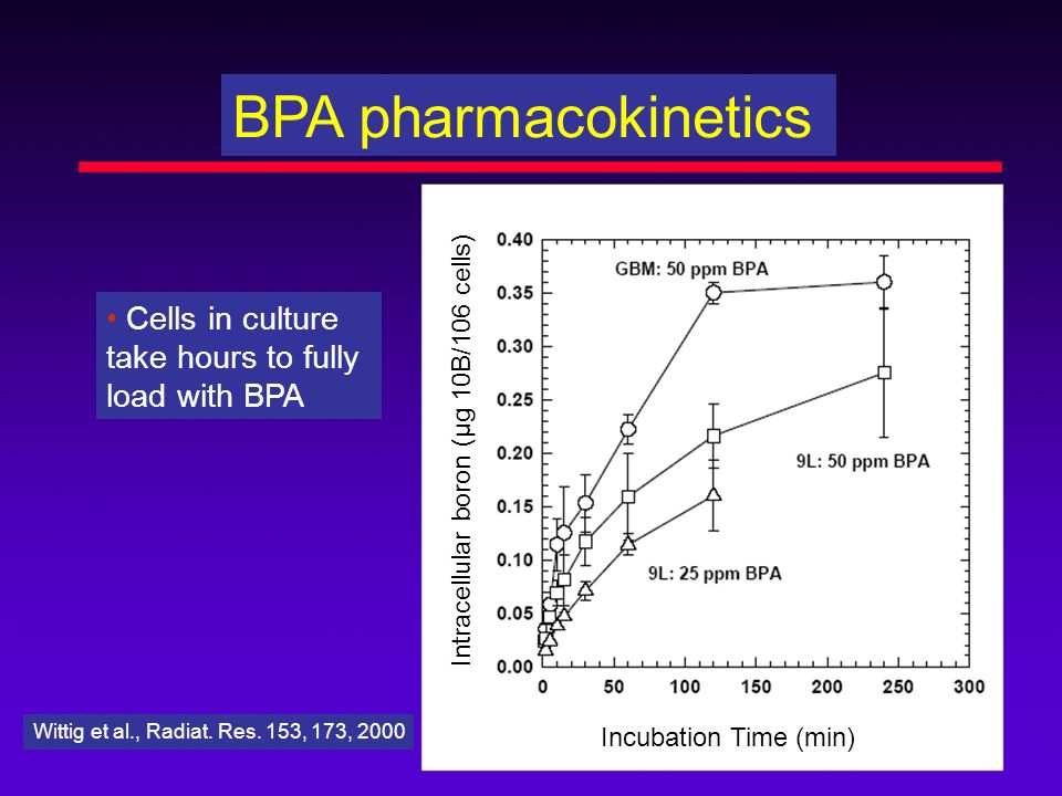BPA pharmacokinetics Cells in culture take hours to fully load with BPA Wittig et al., Radiat. Res. 153, 173, 2000 Intracellular boron (µg 10B/106 cel