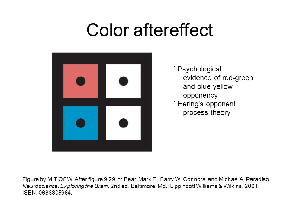 Color aftereffect ˙ Psychological evidence of red-green and blue-yellow opponency ˙ Herings opponent process theory Figure by MIT OCW. After figure 9.