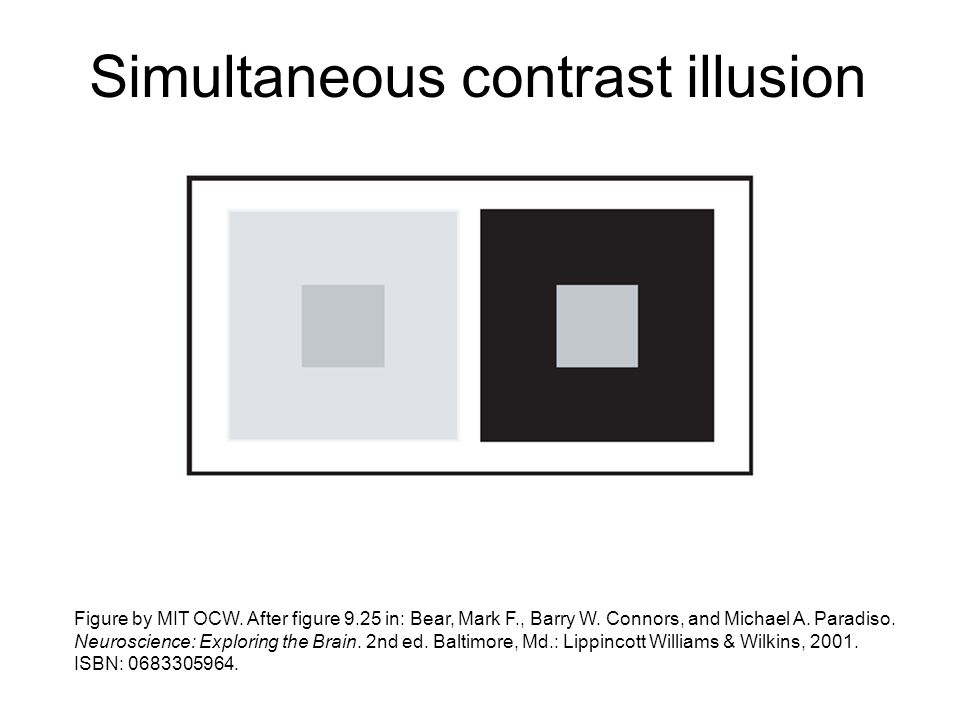 Simultaneous contrast illusion Figure by MIT OCW. After figure 9.25 in: Bear, Mark F., Barry W. Connors, and Michael A. Paradiso. Neuroscience: Explor