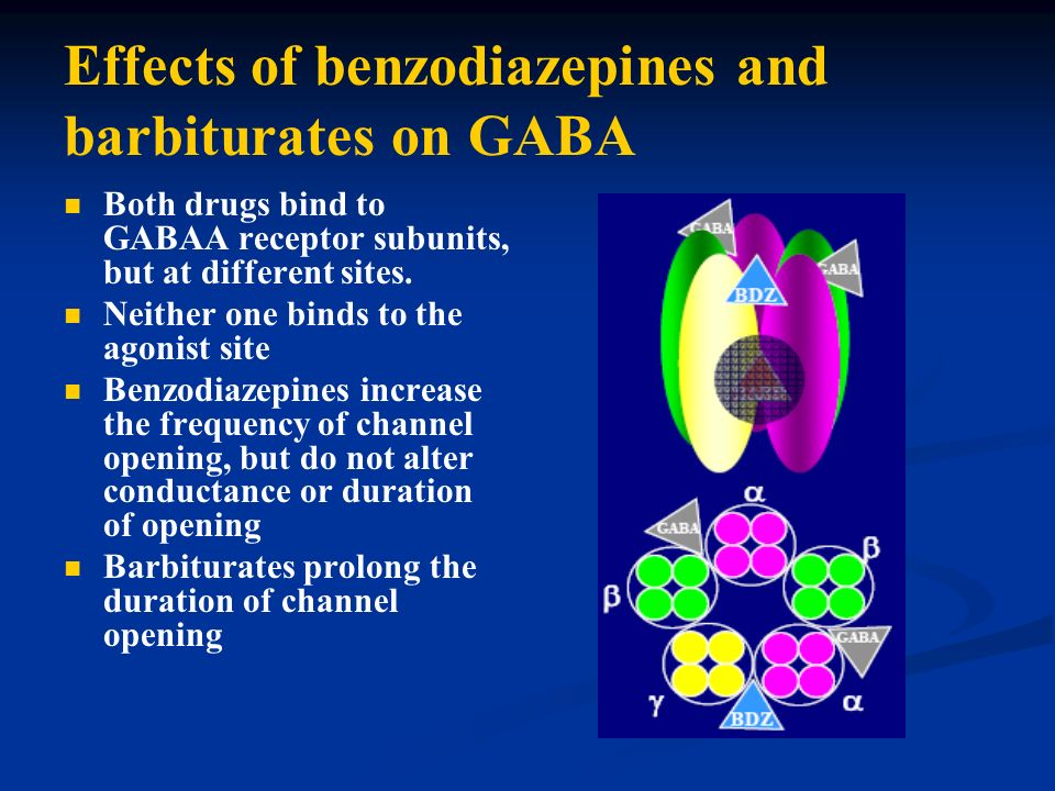 Effects of benzodiazepines and barbiturates on GABA Both drugs bind to GABAA receptor subunits, but at different sites. Neither one binds to the agoni