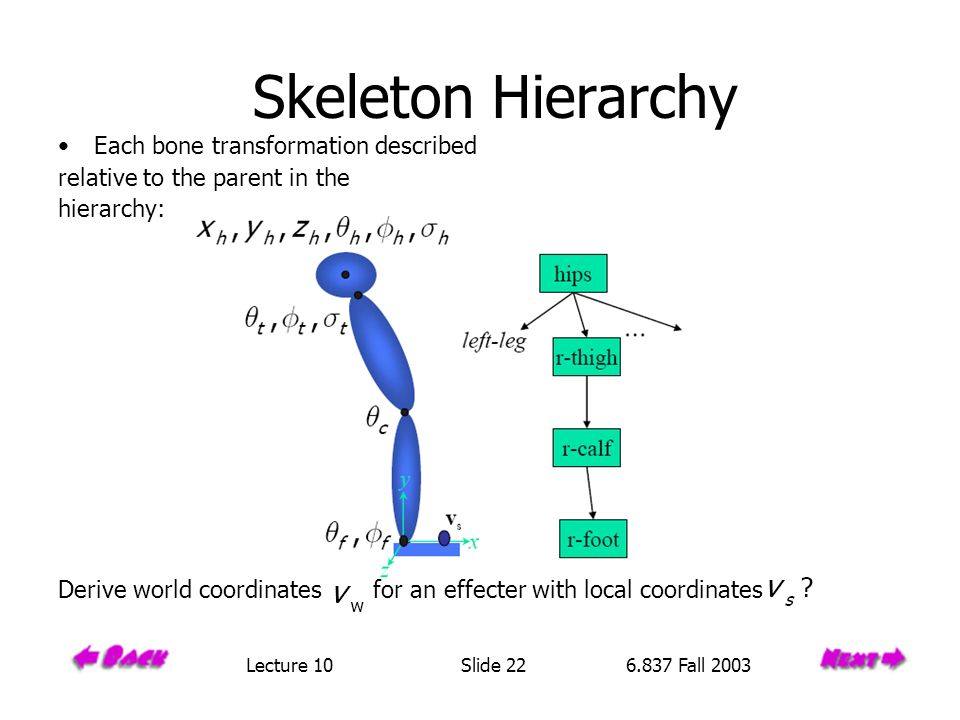 Skeleton Hierarchy Each bone transformation described relative to the parent in the hierarchy: Derive world coordinates for an effecter with local coordinates Lecture 10 Slide 22 6.837 Fall 2003