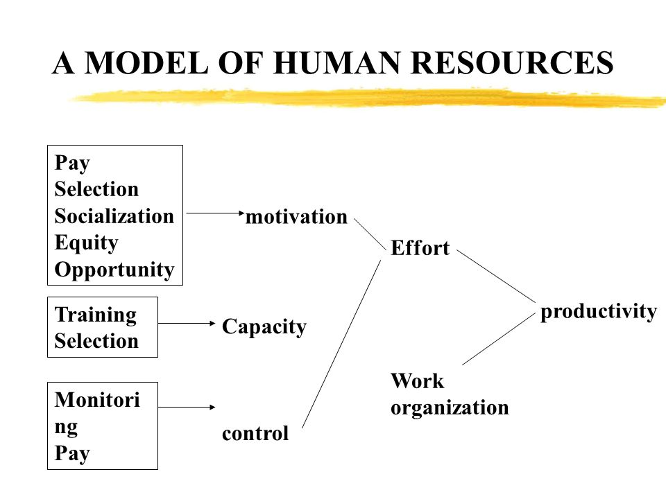 A MODEL OF HUMAN RESOURCES Pay Selection Socialization Equity Opportunity Training Selection Monitori ng Pay motivation Capacity control Effort Work o