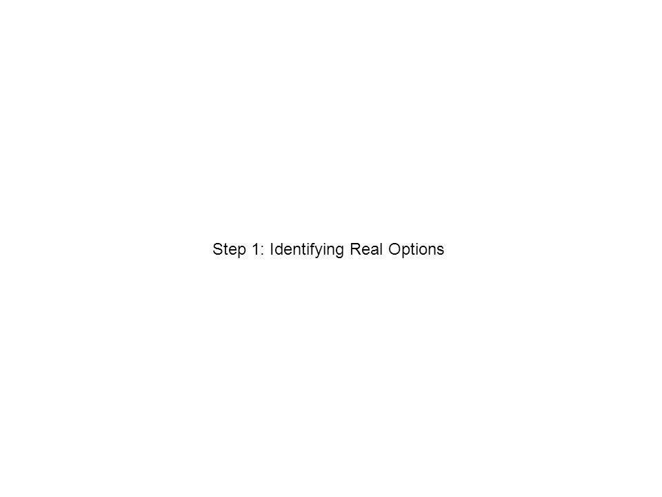 Step 1: Identifying Real Options
