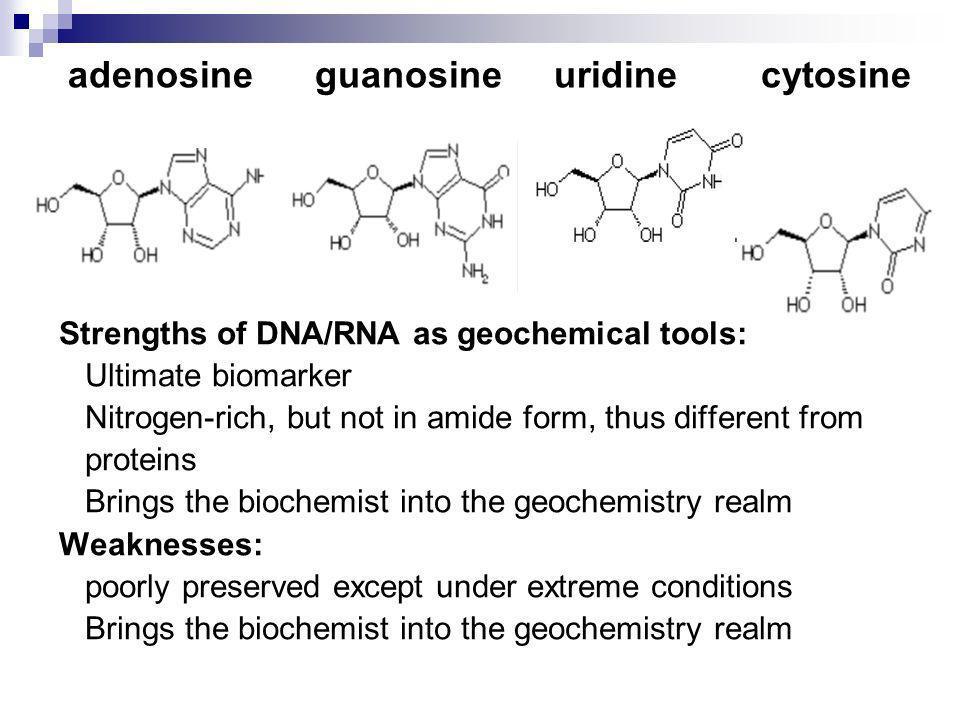 adenosine guanosine uridine cytosine Strengths of DNA/RNA as geochemical tools: Ultimate biomarker Nitrogen-rich, but not in amide form, thus differen