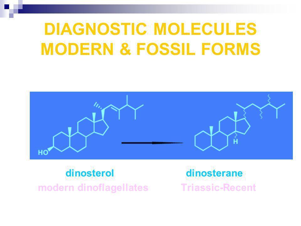 DIAGNOSTIC MOLECULES MODERN & FOSSIL FORMS dinosterol dinosterane modern dinoflagellates Triassic-Recent
