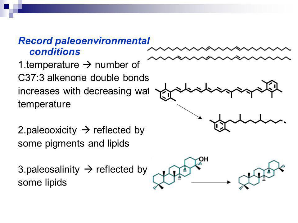 DIAGNOSTIC PIGMENTS isorenierateneChloro bium carotenoid aryl isoprenoidsanoxia in photic zone
