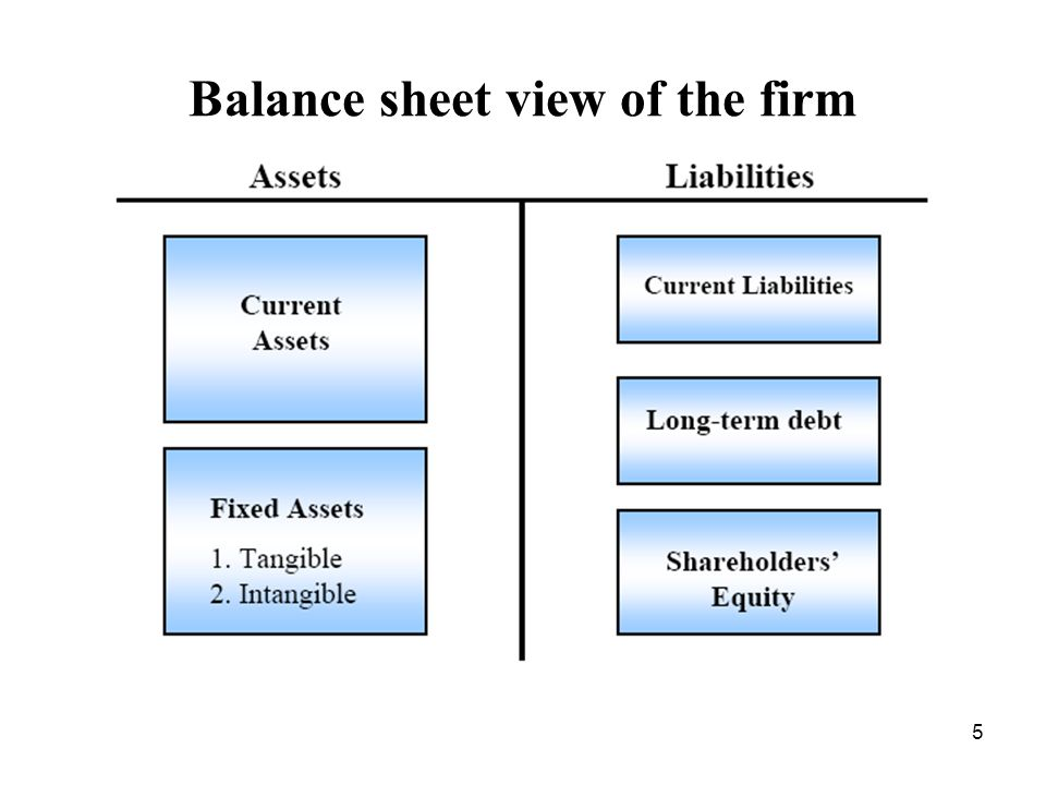 5 Balance sheet view of the firm