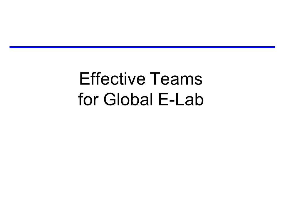 Effective Teams for Global E-Lab