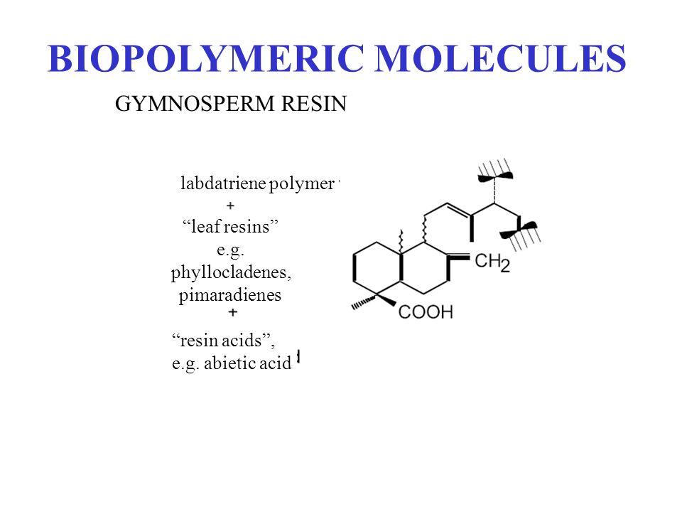 BIOPOLYMERIC MOLECULES GYMNOSPERM RESIN labdatriene polymer leaf resins e.g. phyllocladenes, pimaradienes resin acids, e.g. abietic acid