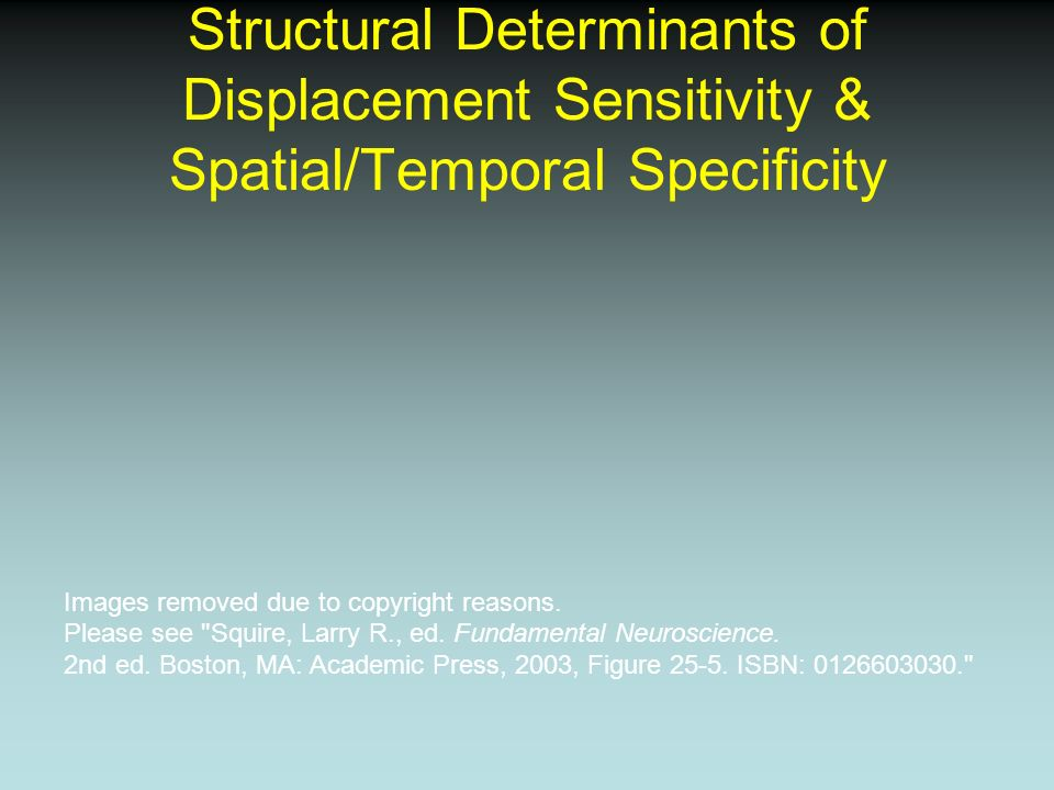 Structural Determinants of Displacement Sensitivity & Spatial/Temporal Specificity Images removed due to copyright reasons. Please see