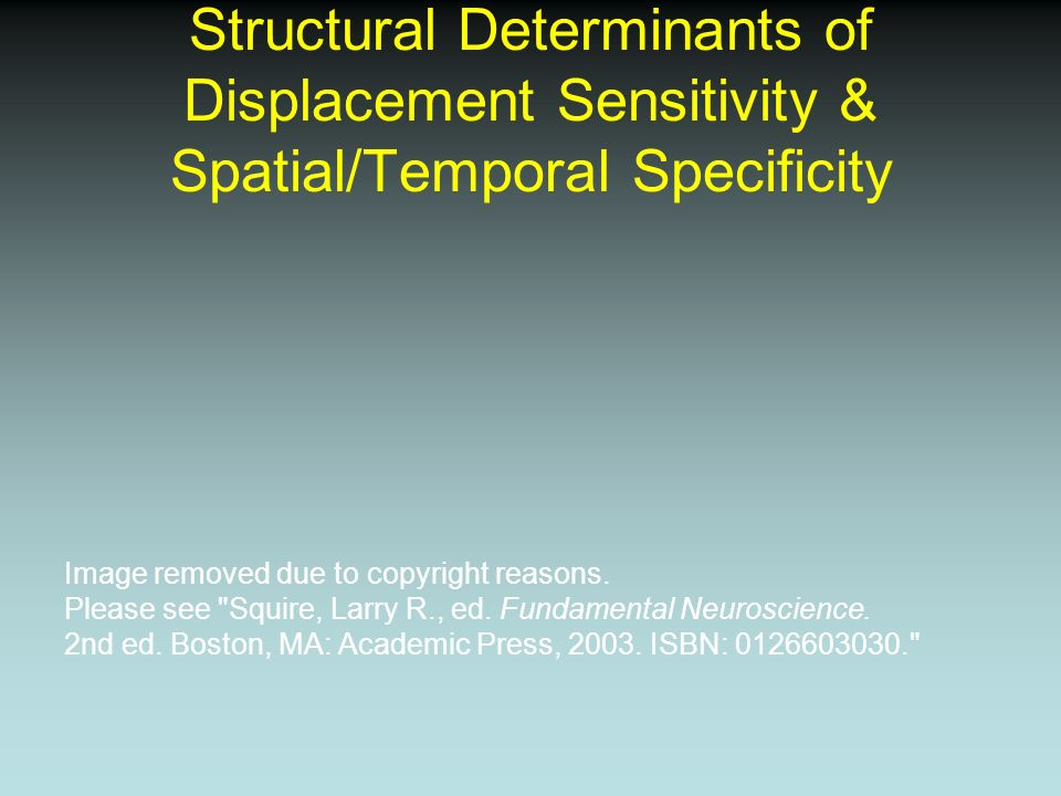 Structural Determinants of Displacement Sensitivity & Spatial/Temporal Specificity Image removed due to copyright reasons. Please see