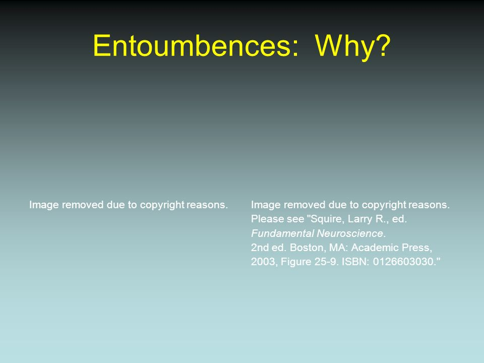 Entoumbences: Why? Image removed due to copyright reasons. Please see
