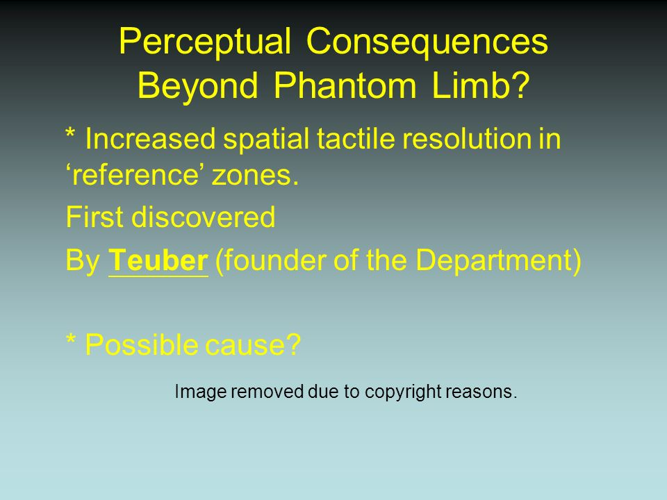 Perceptual Consequences Beyond Phantom Limb? * Increased spatial tactile resolution in reference zones. First discovered By Teuber (founder of the Dep