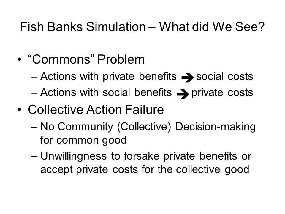 Fish Banks Simulation – What did We See.