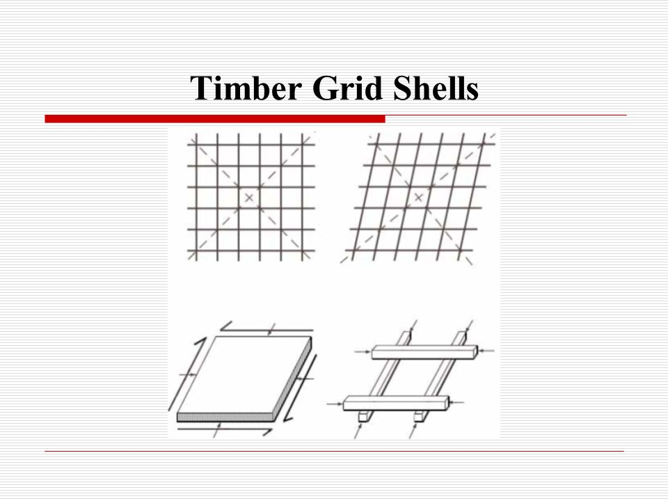 Timber Grid Shells