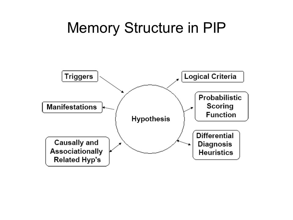 Memory Structure in PIP