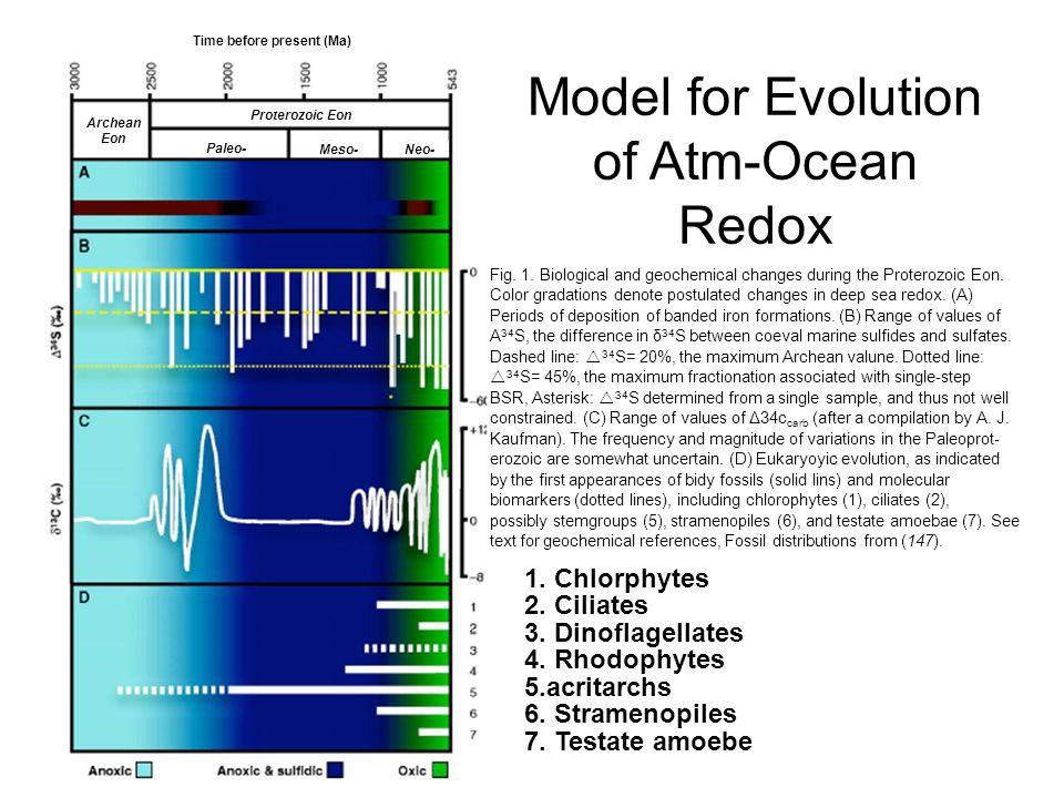 Model for Evolution of Atm-Ocean Redox 1. Chlorphytes 2.