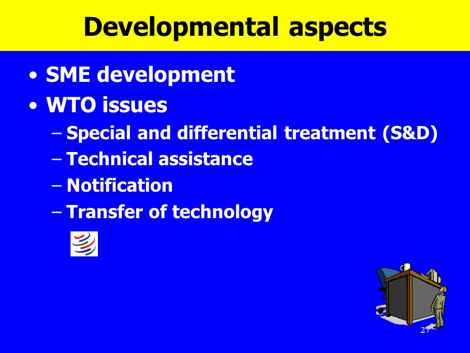 27 Developmental aspects SME development WTO issues –Special and differential treatment (S&D) –Technical assistance –Notification –Transfer of technol