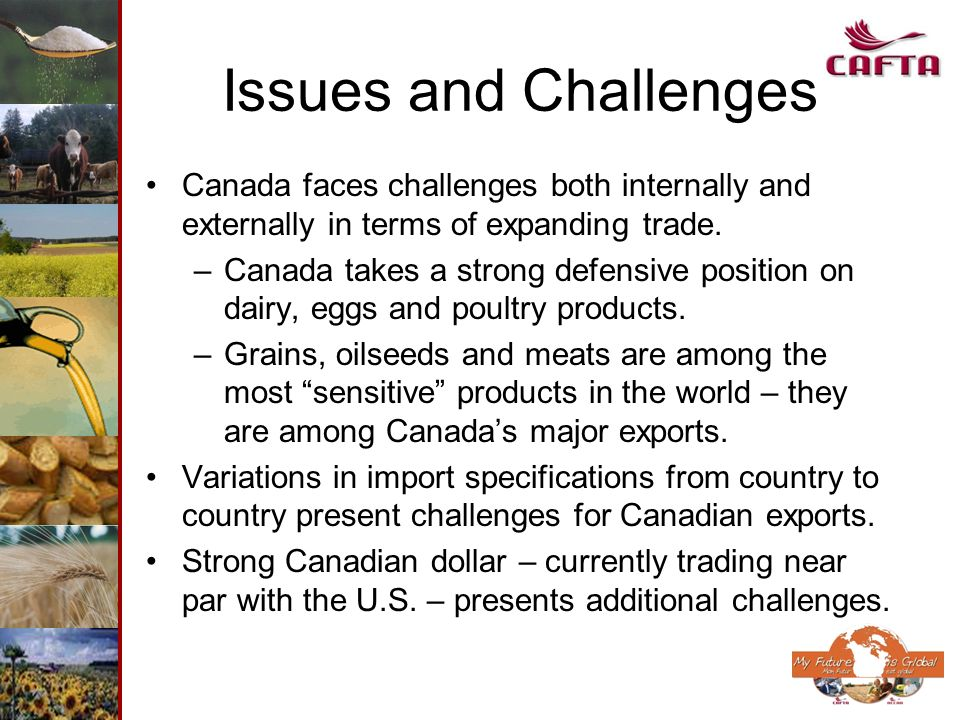Issues and Challenges Canada faces challenges both internally and externally in terms of expanding trade. –Canada takes a strong defensive position on
