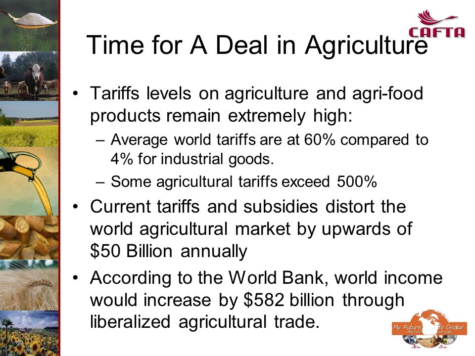 Time for A Deal in Agriculture Tariffs levels on agriculture and agri-food products remain extremely high: –Average world tariffs are at 60% compared