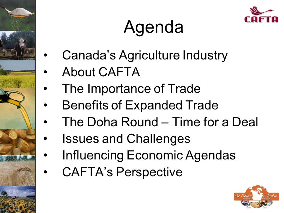 Agenda Canadas Agriculture Industry About CAFTA The Importance of Trade Benefits of Expanded Trade The Doha Round – Time for a Deal Issues and Challen