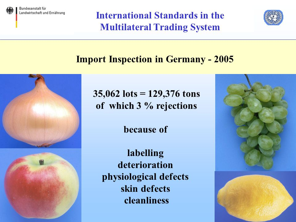 19 International Standards in the Multilateral Trading System Import Inspection in Germany ,062 lots = 129,376 tons of which 3 % rejections because of labelling deterioration physiological defects skin defects cleanliness