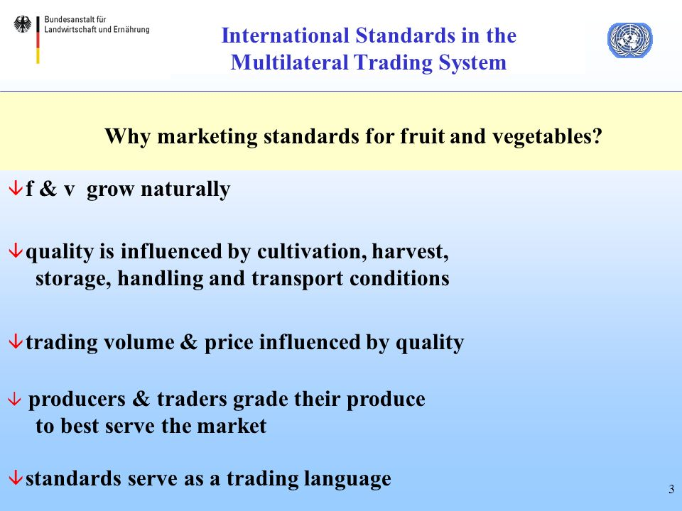 3 International Standards in the Multilateral Trading System Why marketing standards for fruit and vegetables.