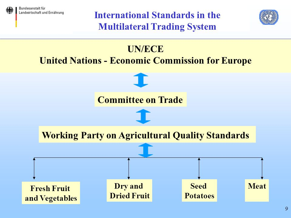 9 International Standards in the Multilateral Trading System UN/ECE United Nations - Economic Commission for Europe Committee on Trade Working Party on Agricultural Quality Standards Fresh Fruit and Vegetables Dry and Dried Fruit Seed Potatoes Meat