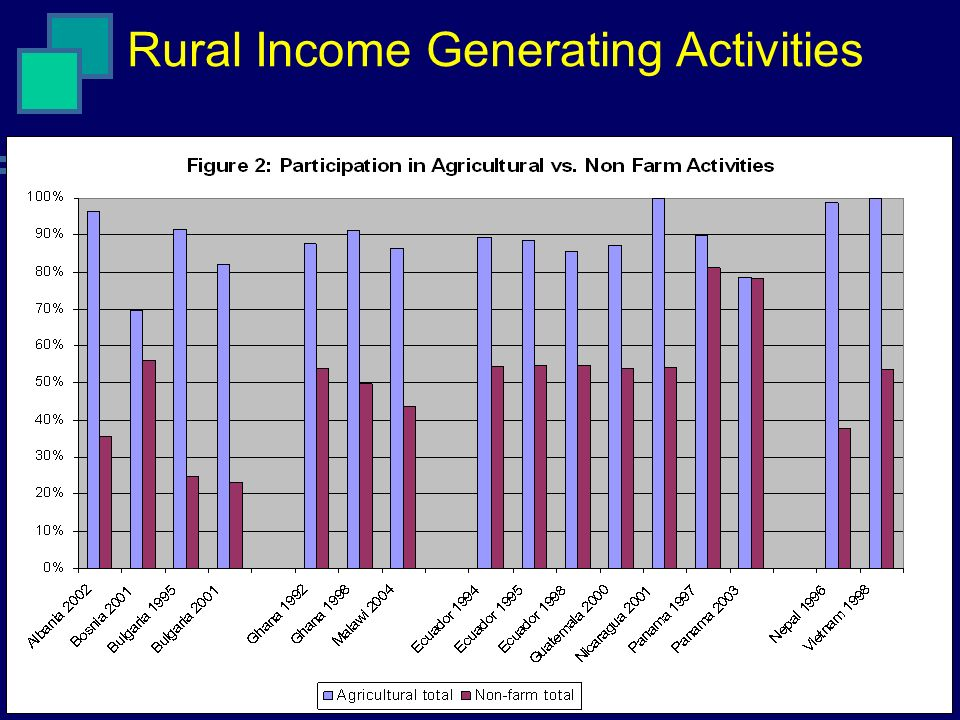 Rural Income Generating Activities
