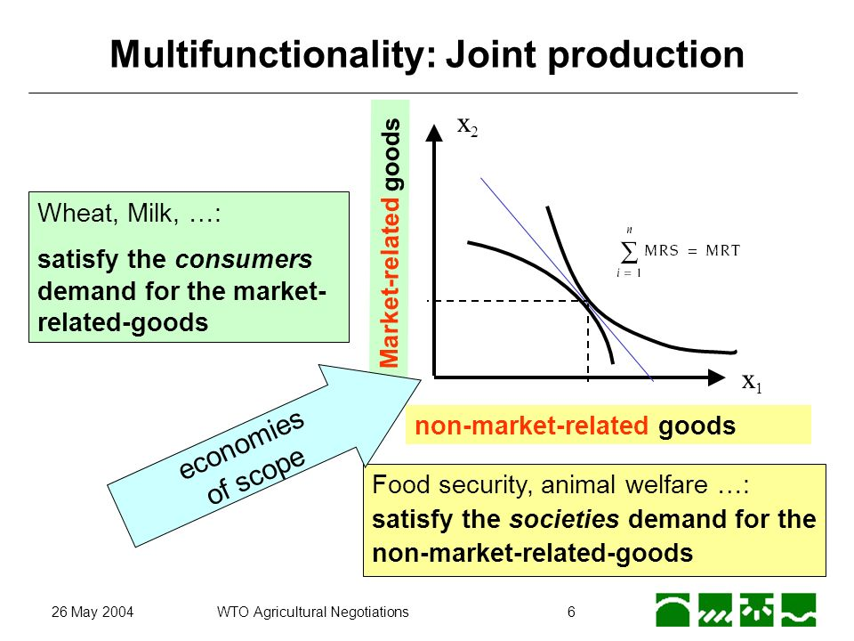 26 May 2004WTO Agricultural Negotiations6 Multifunctionality: Joint production x2x2 non-market-related goods Market-related goods x1x1 Wheat, Milk, …: satisfy the consumers demand for the market- related-goods Food security, animal welfare …: satisfy the societies demand for the non-market-related-goods economies of scope