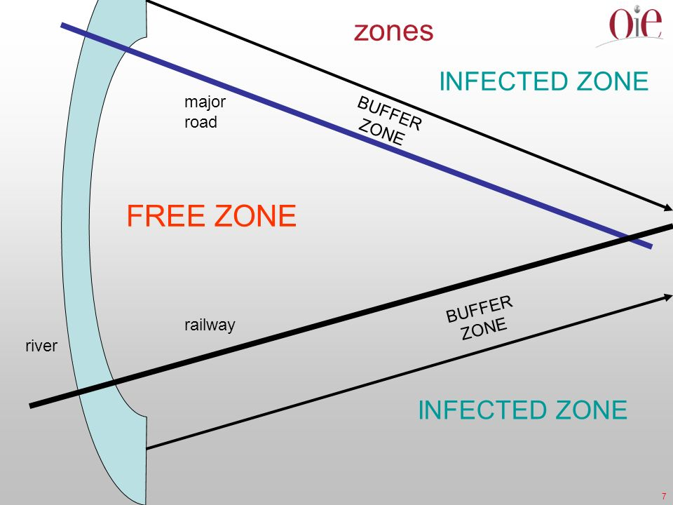 7 INFECTED ZONE BUFFER ZONE railway major road river zones BUFFER ZONE FREE ZONE