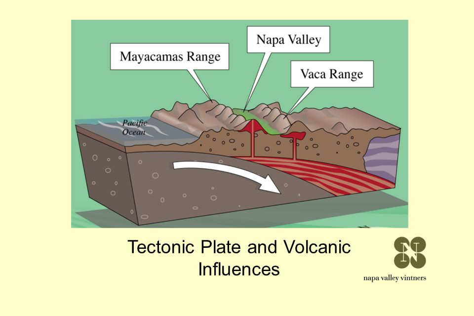 Tectonic Plate and Volcanic Influences