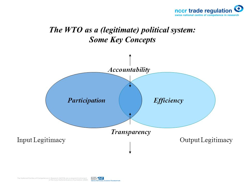 The WTO as a (legitimate) political system: Some Key Concepts Transparency Accountability Participation Efficiency Input LegitimacyOutput Legitimacy