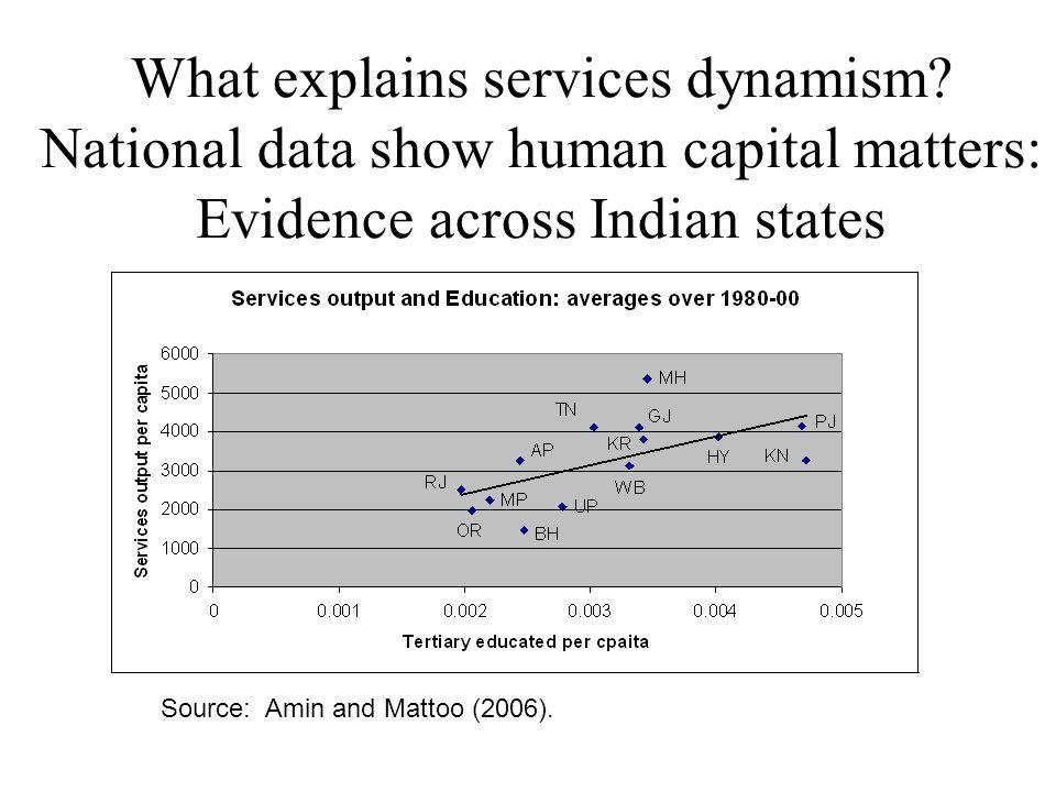 What explains services dynamism.