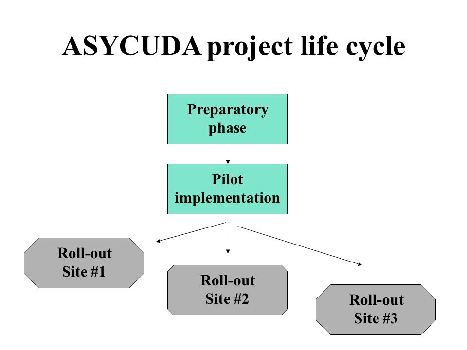 Preparatory phase Pilot implementation Roll-out Site #1 Roll-out Site #2 Roll-out Site #3 ASYCUDA project life cycle